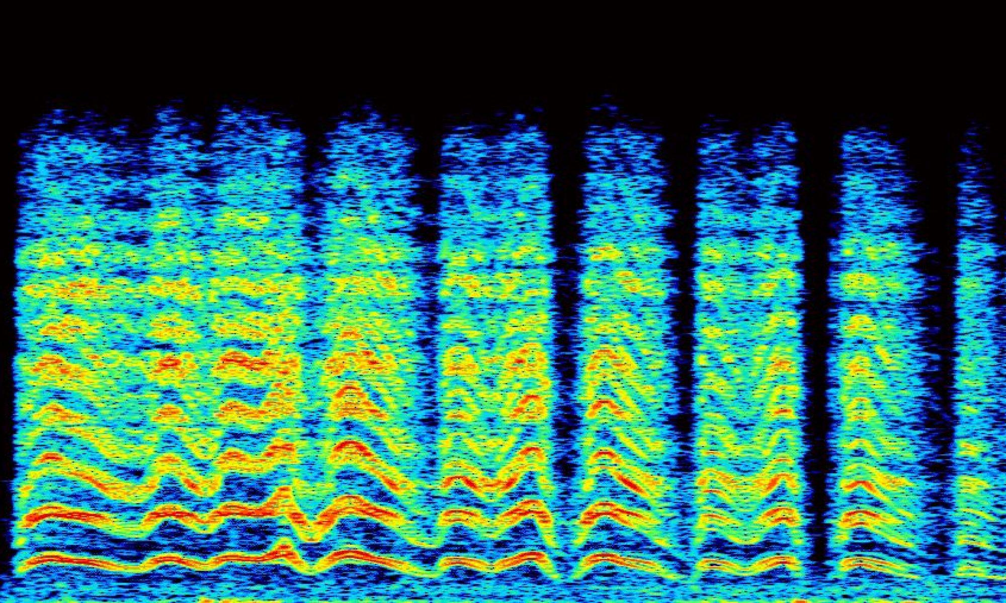 Acoustic Communications
